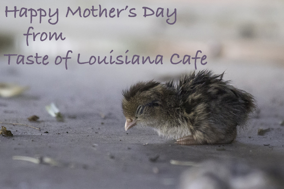 Mother's Day in Denham Springs, LA